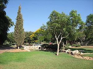 Ариэль. Фотография из Википедии