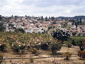 בית-שמש. Photo:  Netzah.org (c)