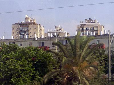 Лод. Фото: Netzah.org